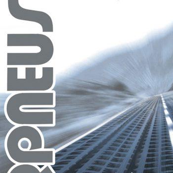 federpneus 2013 Poster copertina